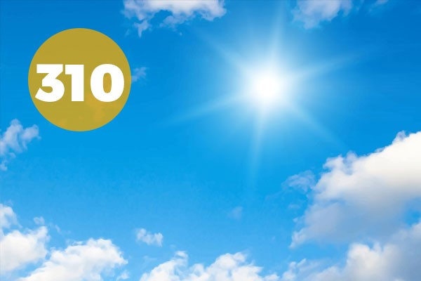 310 Days of Sunshine